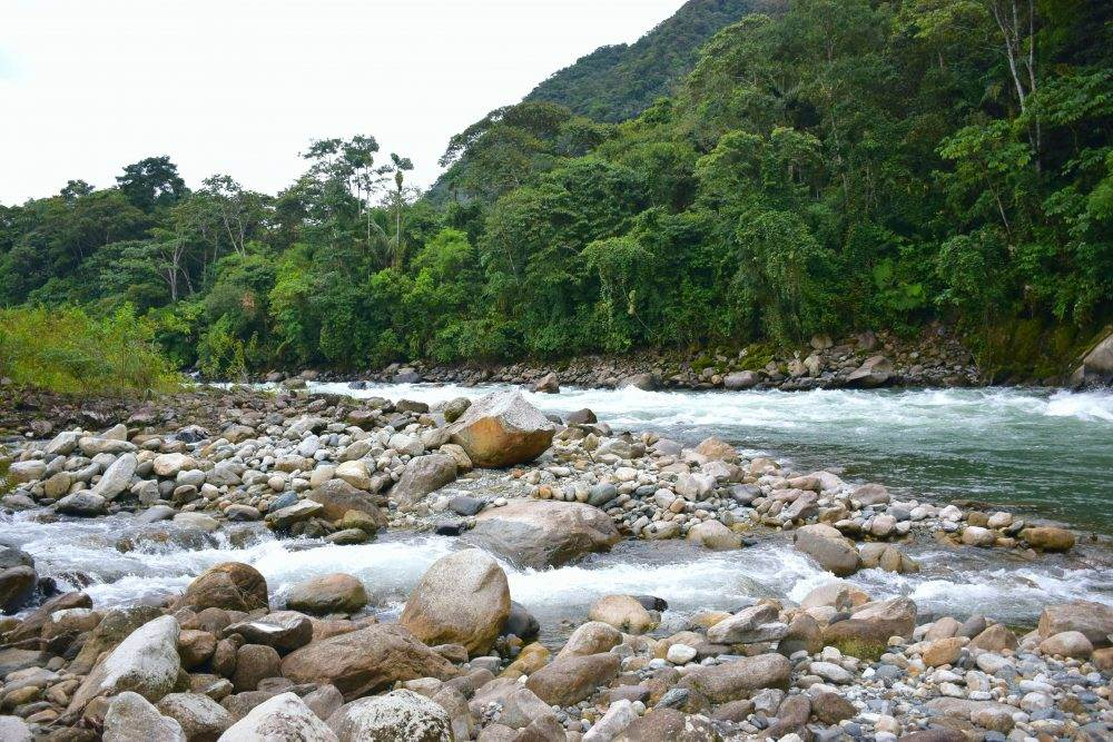 one of the rivers in the peruvian jungle near our worksite