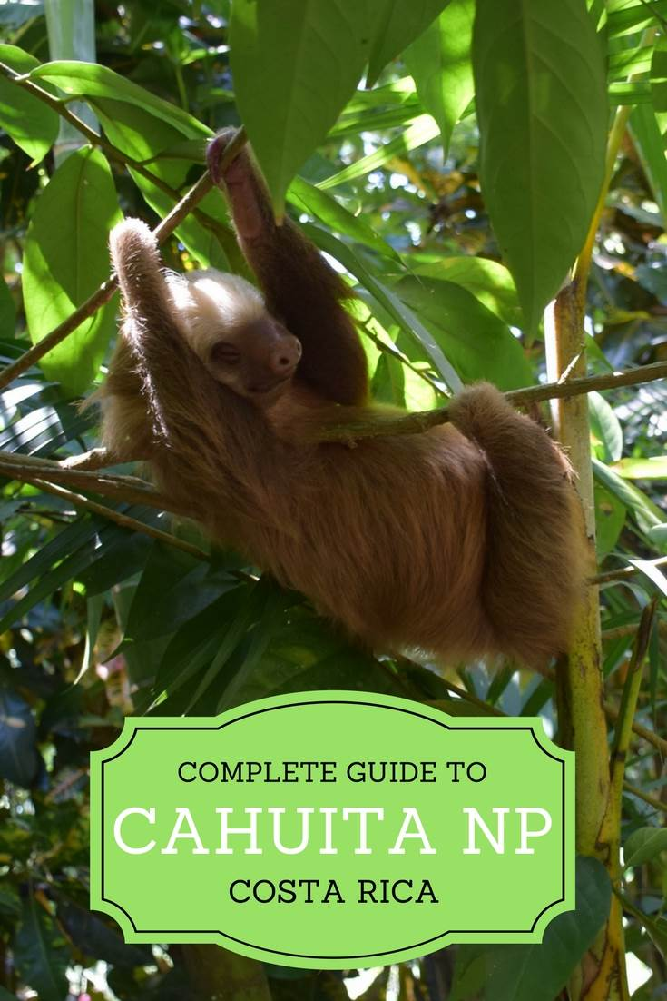 backpackers guide to Cahuita National Park Pinterest