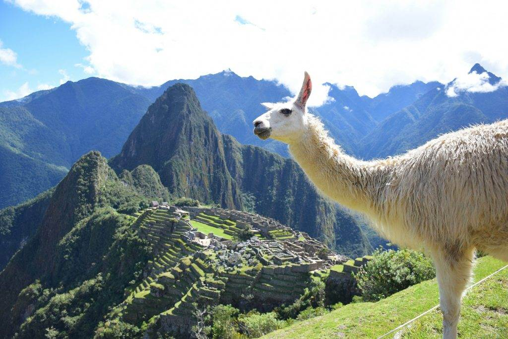 Machu Picchi peru photo travel gallery
