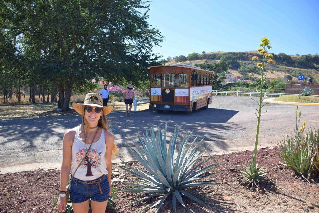 on the tequila tour in mexico!