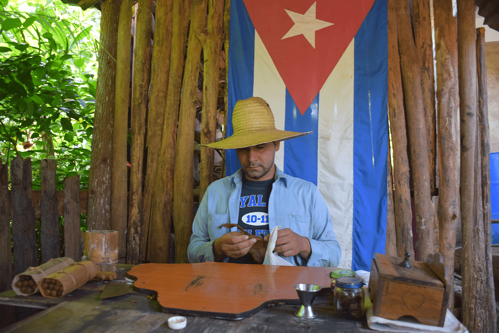 A Cuban cigar farmer rolls a cigar for us