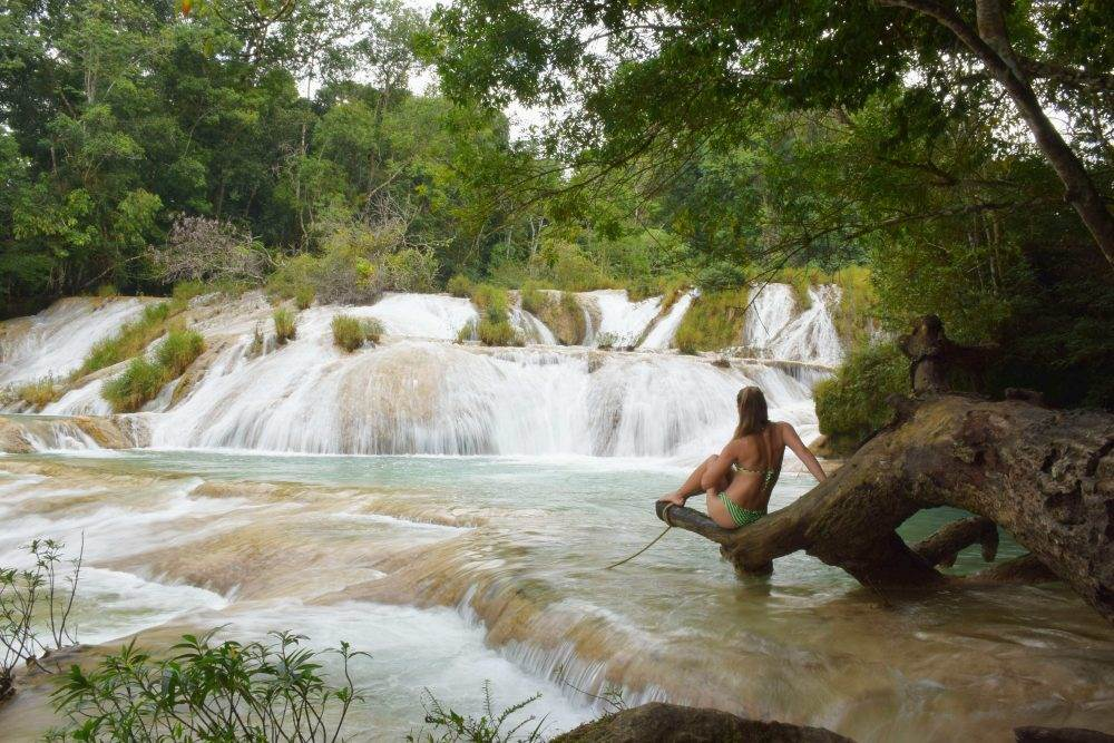 the palenque waterfalls were easily one of my mexico highlights
