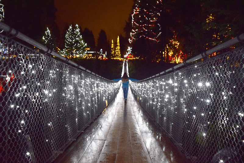 the Capilano suspension is one of the best things to do in Vancouver in winter