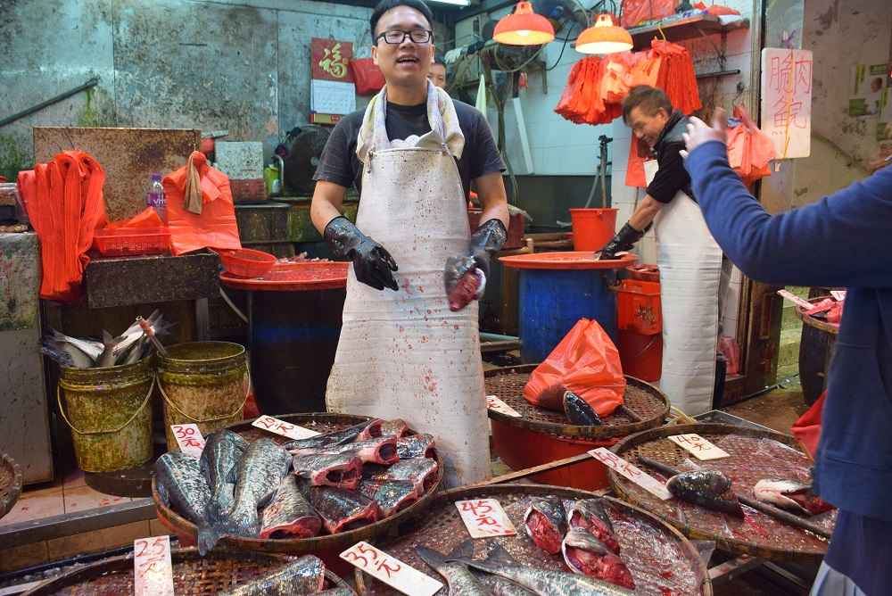 photos of the fish market in hong kong
