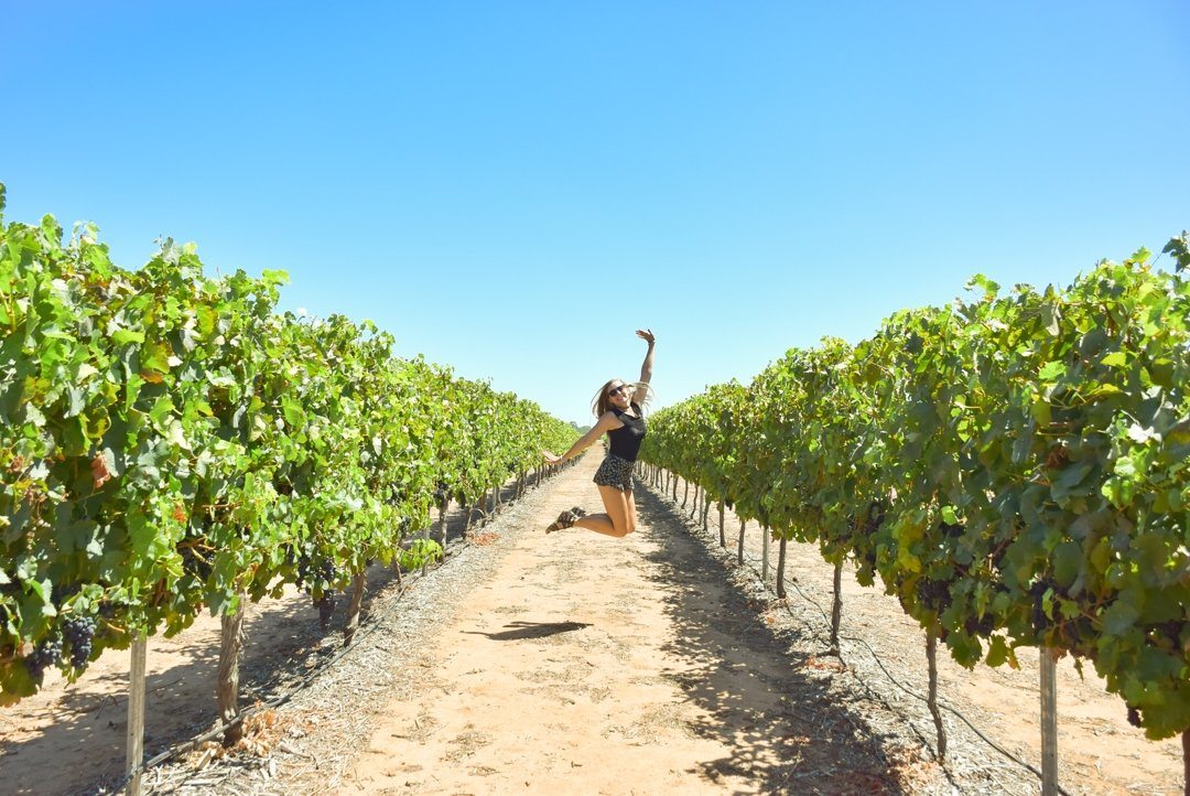 Swan valley wine tours are great things to do in Perth