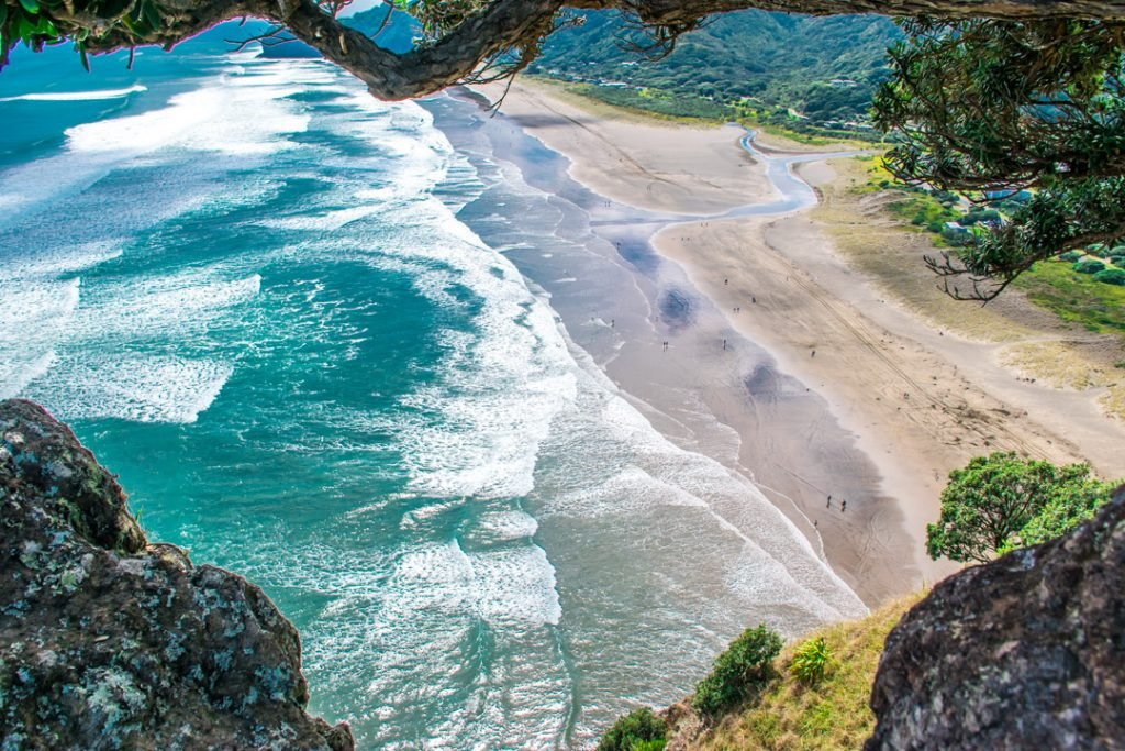 Piha Beach, Auckland as seen from Lion Rock!