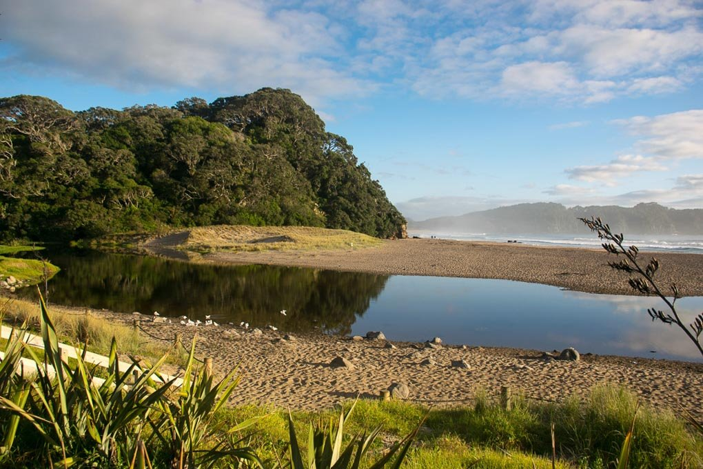 The view of Hot Water Beach, New Zealand from the carpark