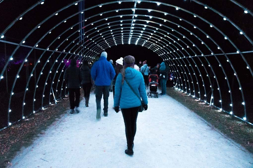 luma light tunnel light festival