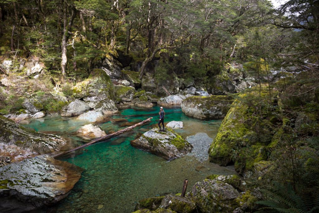 This is a photo of the Dart River along the Routeburn Track
