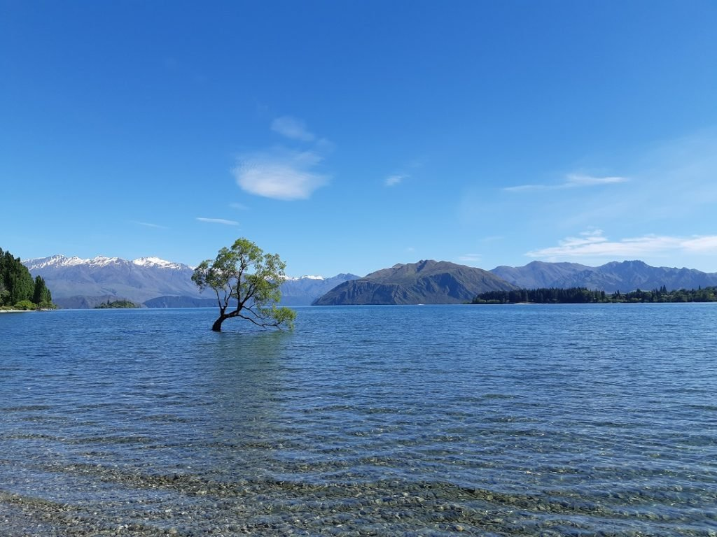 Visiting Lake Wanaka is a south island bucket list thing to do!