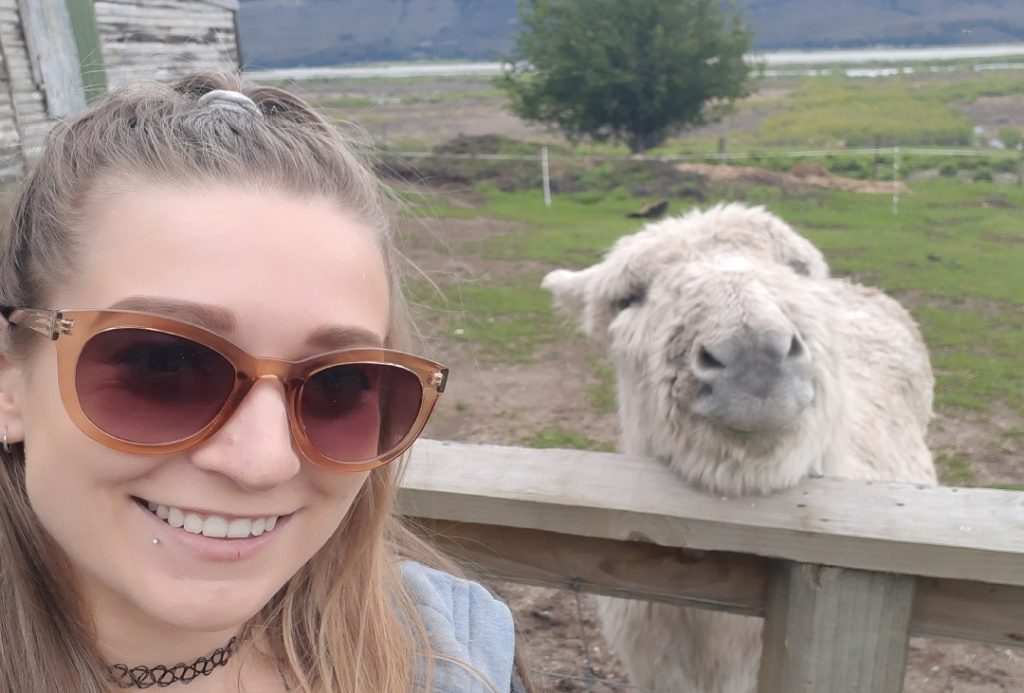 selfie with a donkey