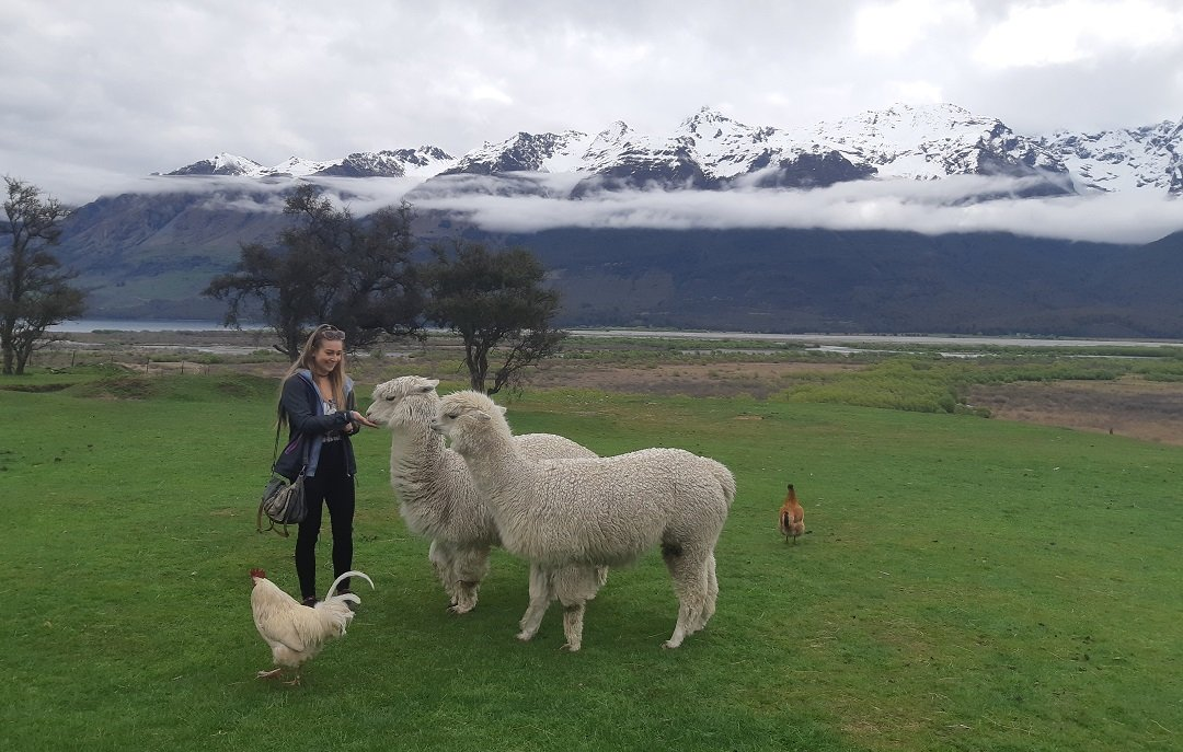 Feeding some of the friendly animals at the Glenorchy Animal Experience  with a gorgeous view