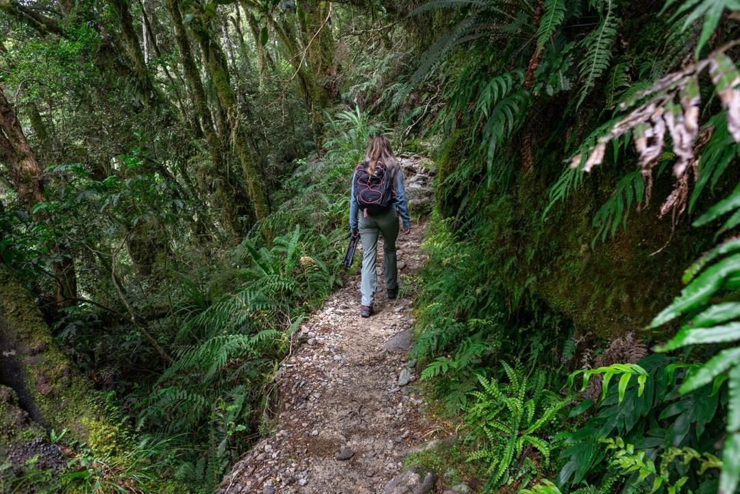 walking along the lake marian track