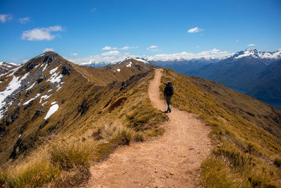 walking the ridge on day two of the kepler track