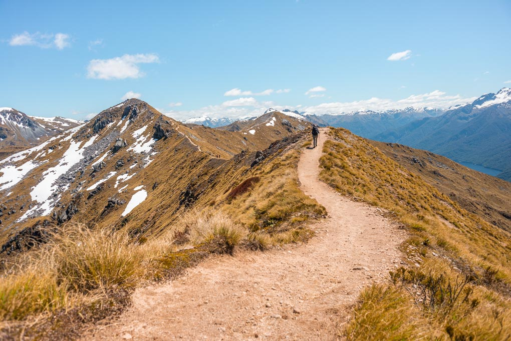 A photo of a lady walking on the ridge line of the kepler Track, New Zealand