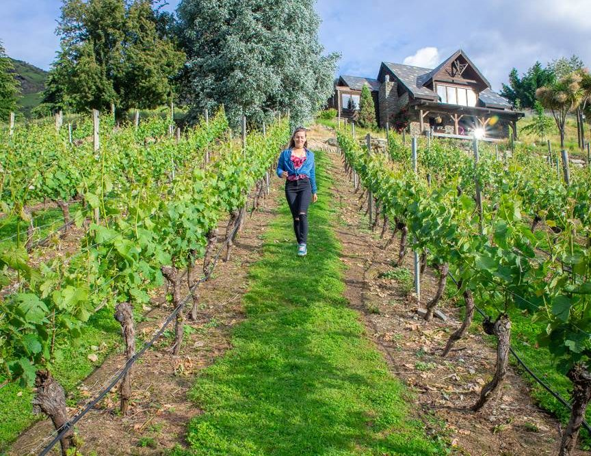 The best Queenstown wineries are located in the gibbston valley
