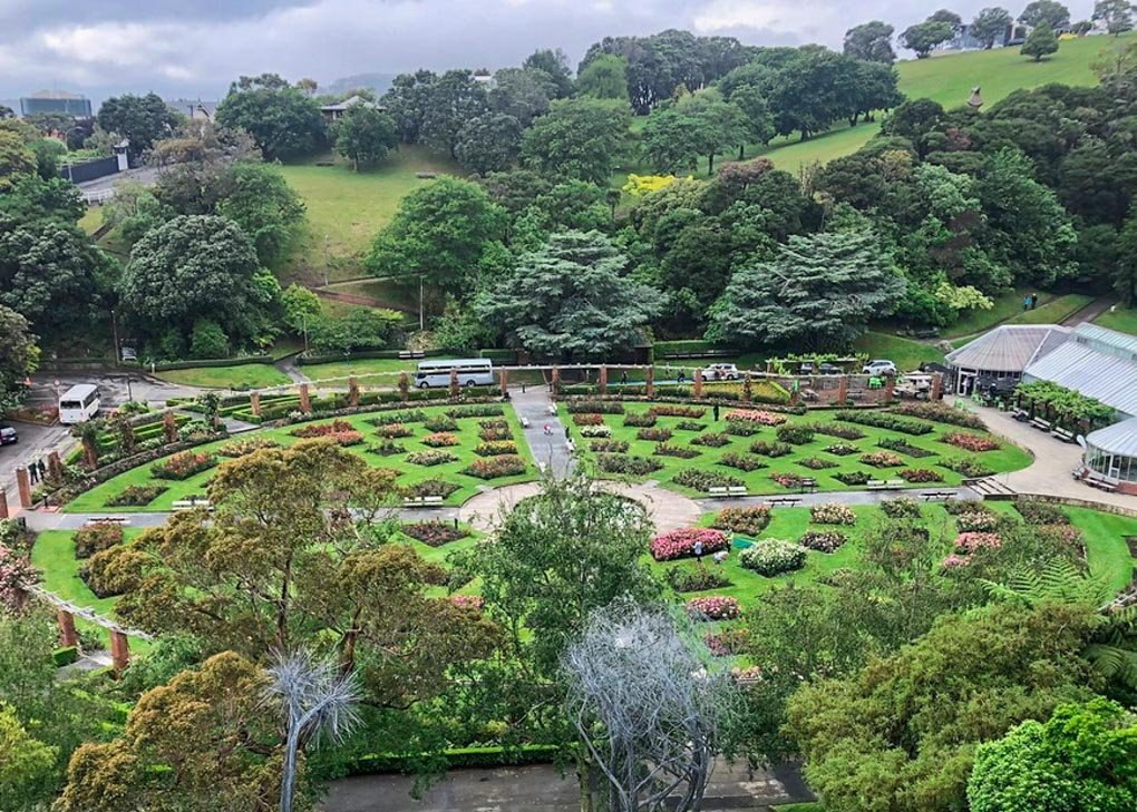 View of the flower garden at the Wellington Botanical Gardens