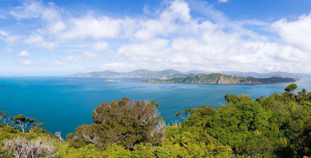 the view from motuara island