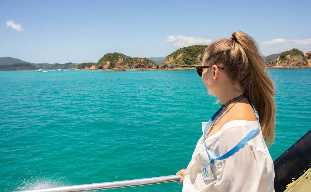 cruising around the bay of islands
