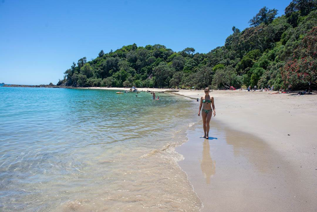 15 BEST Beaches in New Zealand (on the North Island)