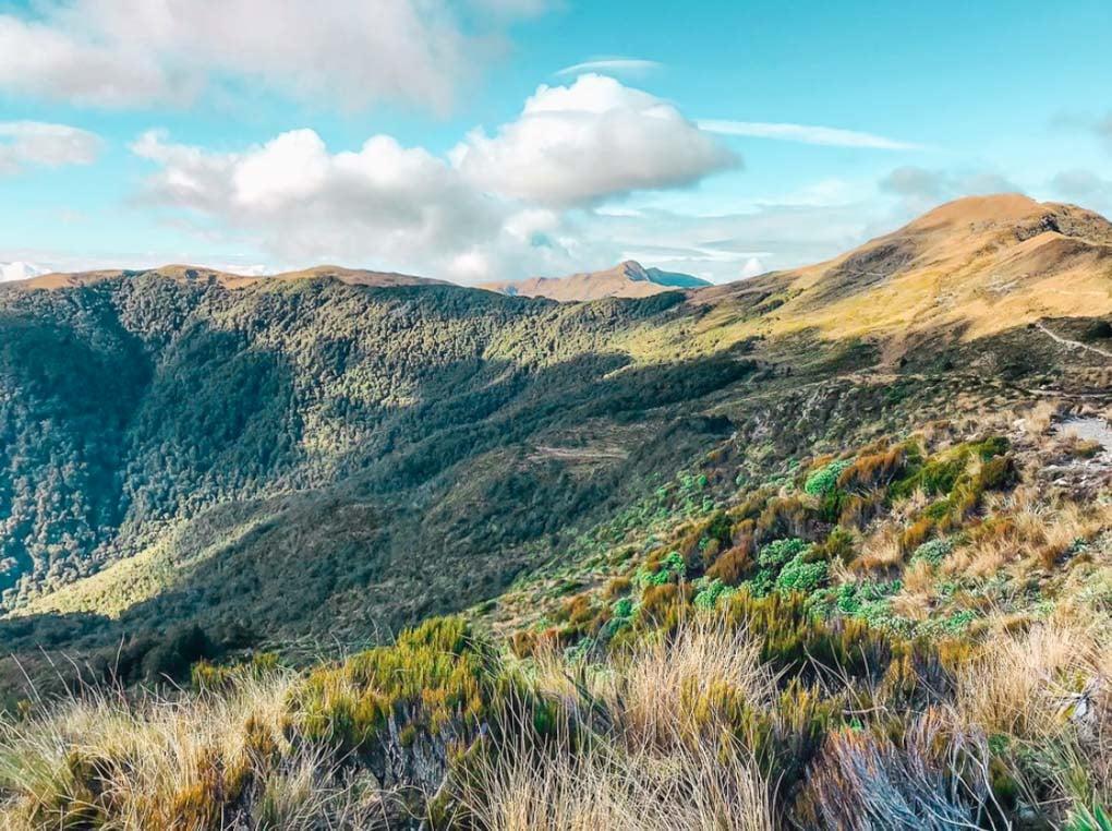 Paparoa Track, Punakaiki, New Zealand