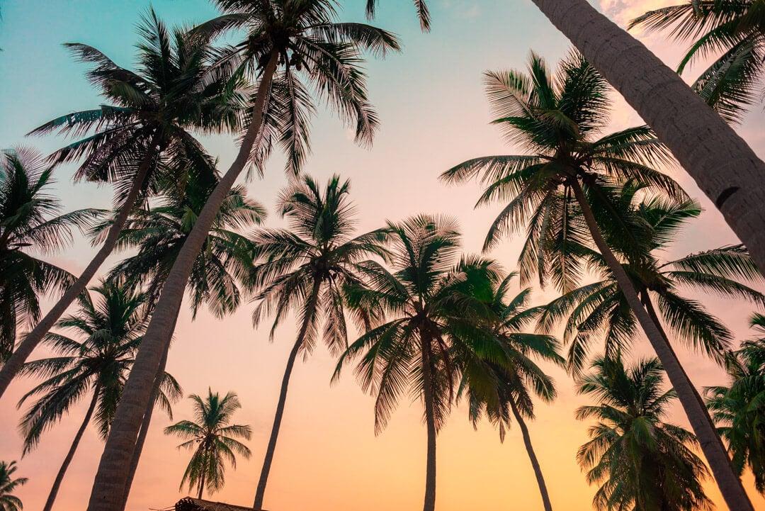 7 Awesome Things to do in Nilaveli Beach, Sri Lanka