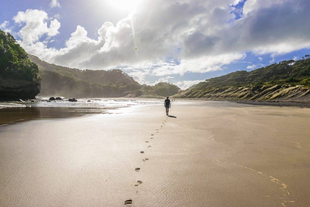Bethells Beach, New Zealand, North Island