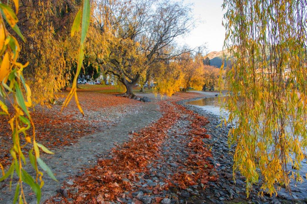 Autumn in Queenstown