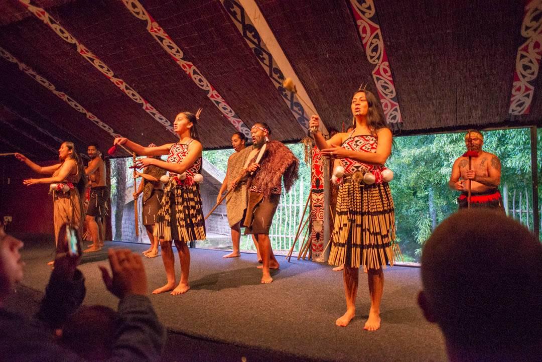 a maori experience