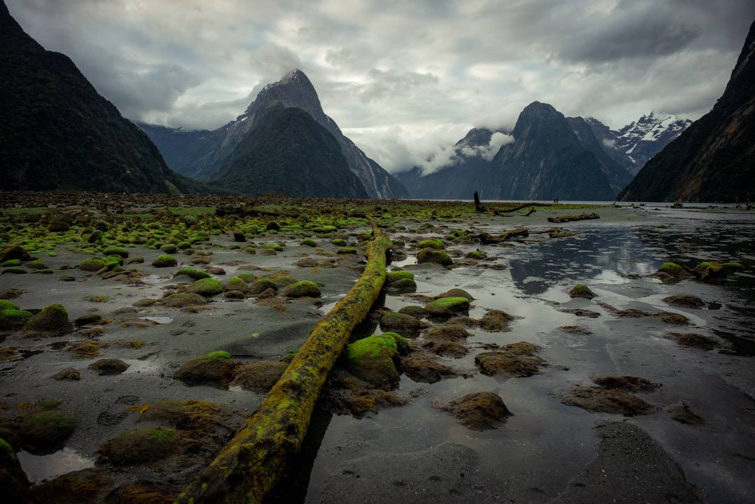 One of the best stops on New Zealand road trip is Milford Sound