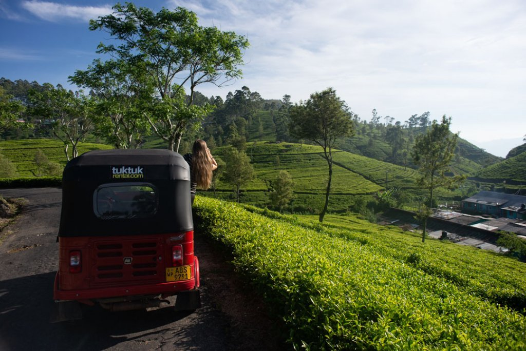 Driving our tuk tuk around the tea plantations near Haputale!