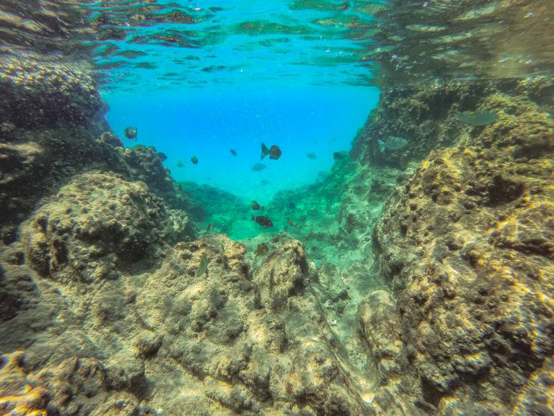 Snorkeling at Red Rocks in Trincomalee