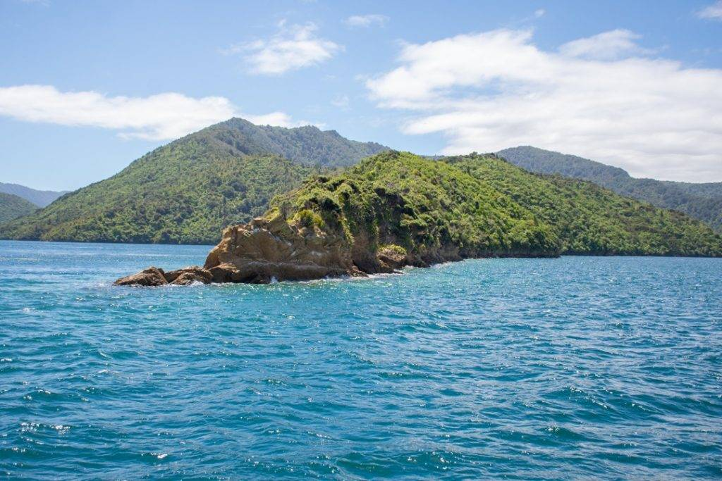 Views of the Marlborough Sounds from our cruise