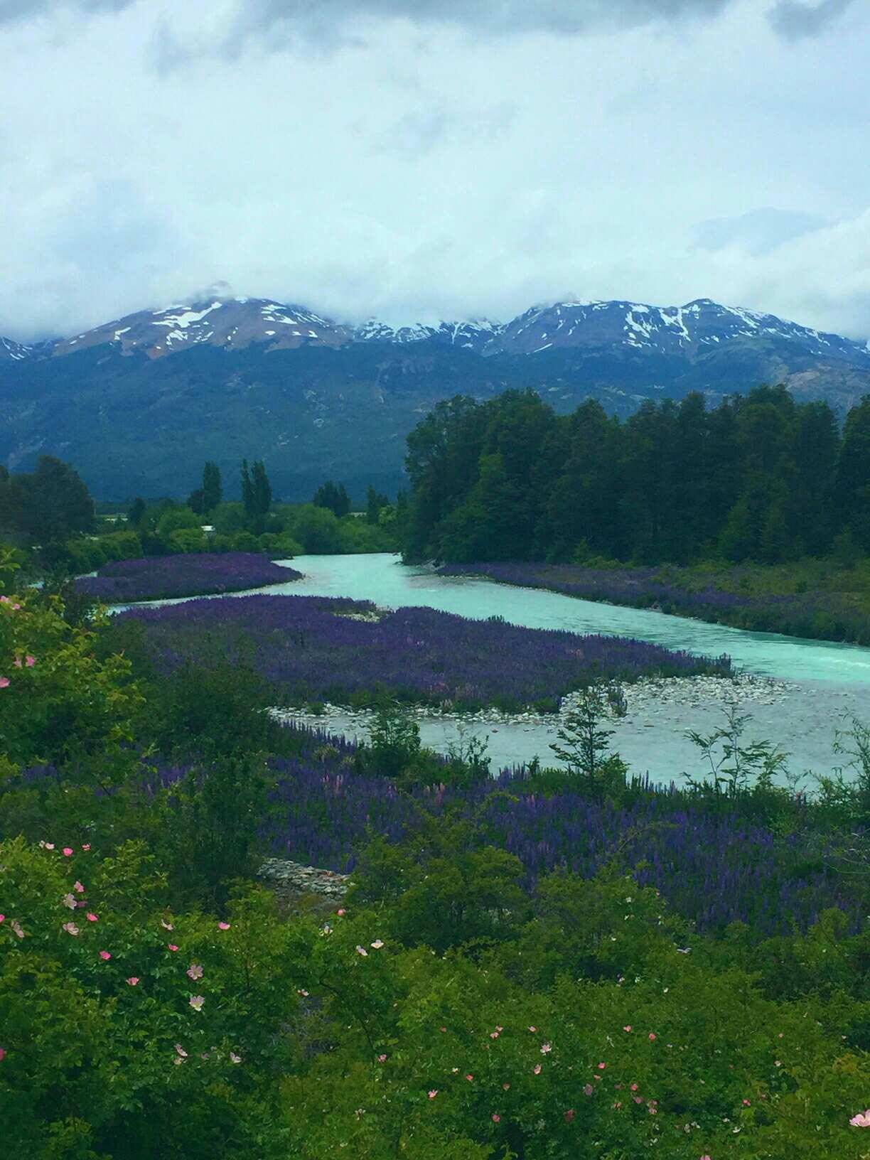 beautiful views along the way to the marble caves, Patagonia