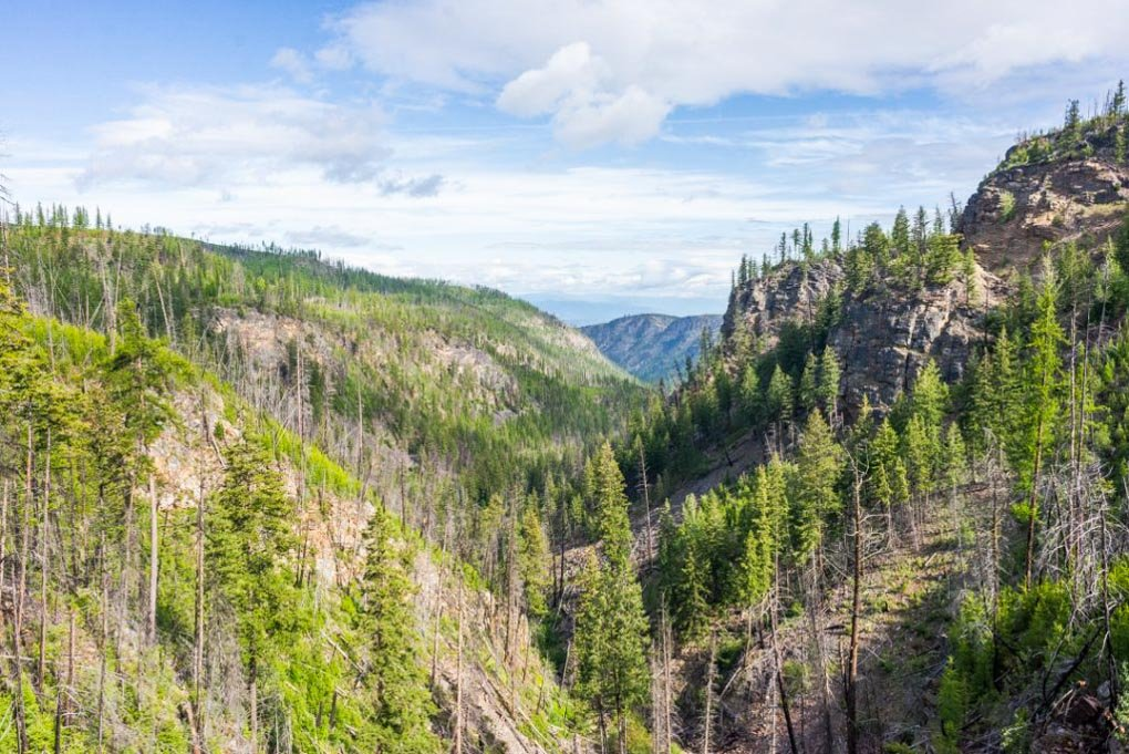 Views of the Myra Canyon in Kelowna BC while enjoying a summer bike ride