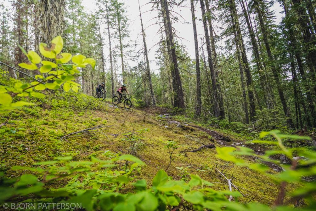 Downhill Mountain biking in Revelstoke