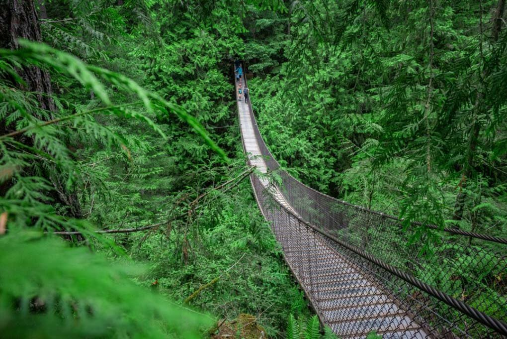 The Lynn canyon suspension bridge in Vancouver, BC