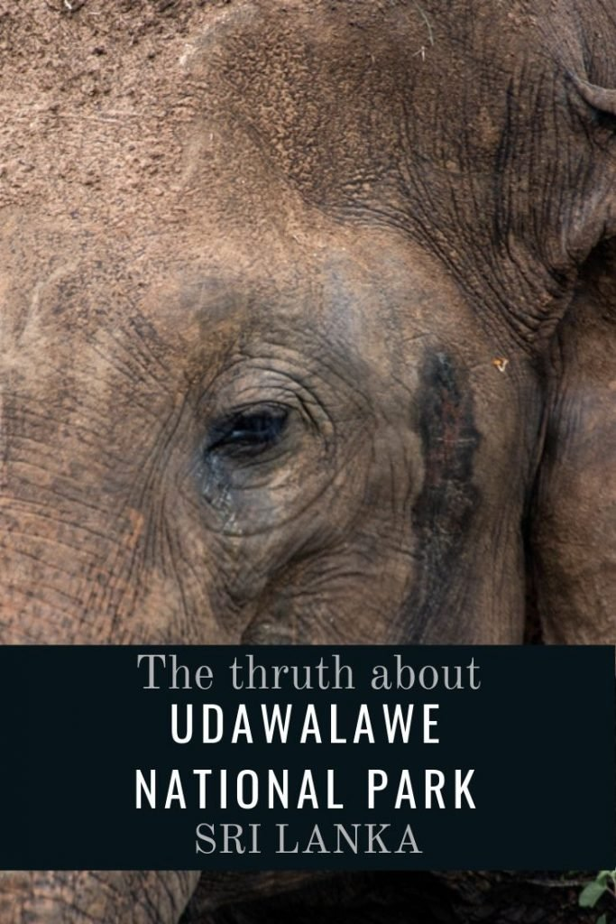 The truth about Udawalawe National Park