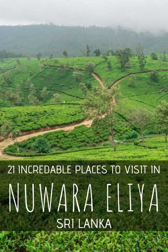 Things to do in Nuwara Eliya pin