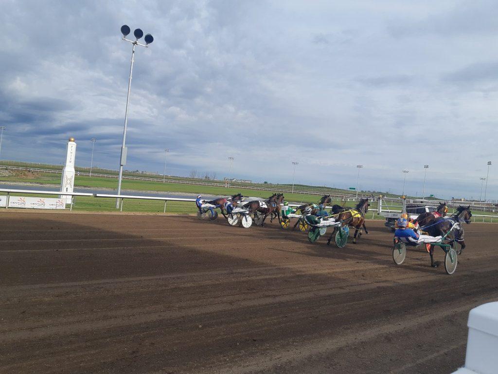 horse racing saskatoon