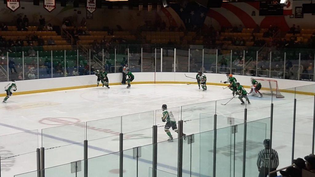 hockey game sakstoon