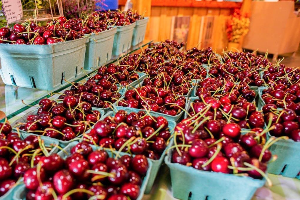 Fresh cherries at a farmers market