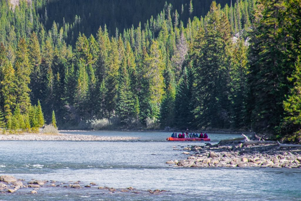 whitewater rafting on the bow river