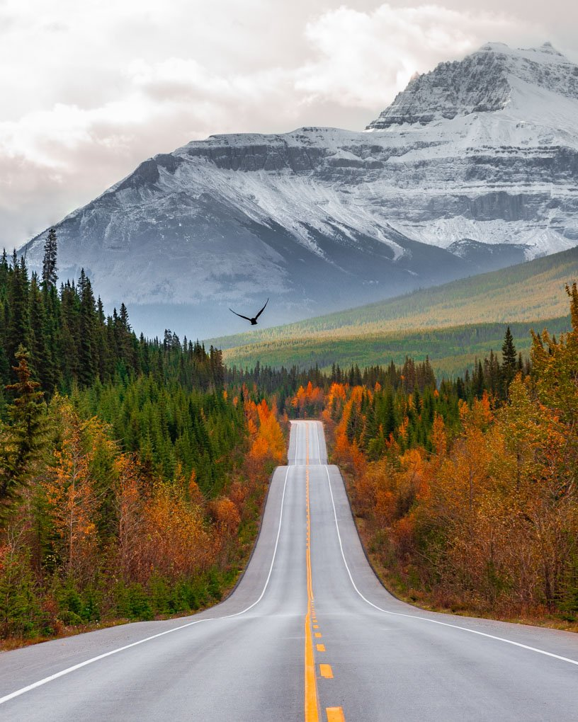 Icefield Parkway, Banff, Canada
