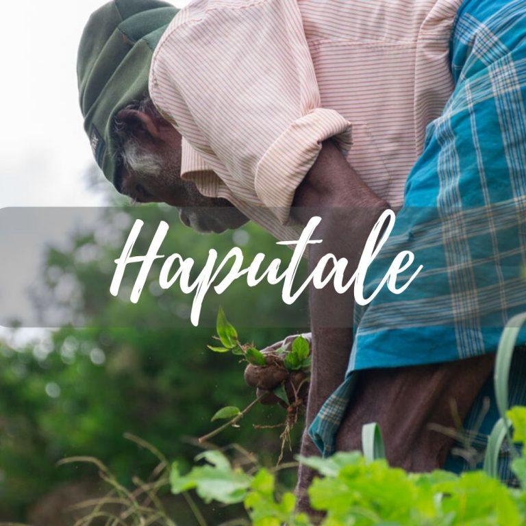 Haputale