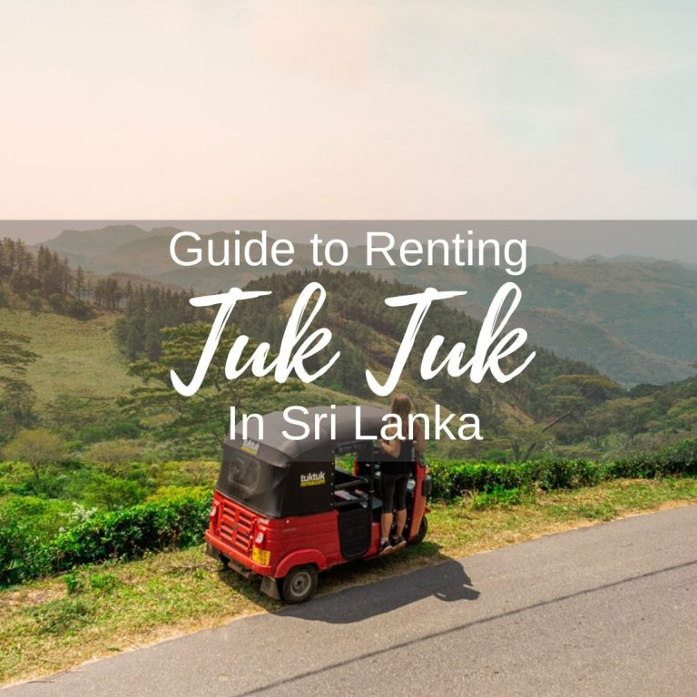 Guide to renting a tuk tuk in Sri Lanka