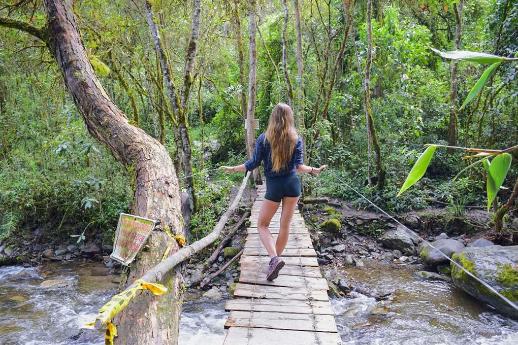 Hiking in the Valle de Cocora, Salento