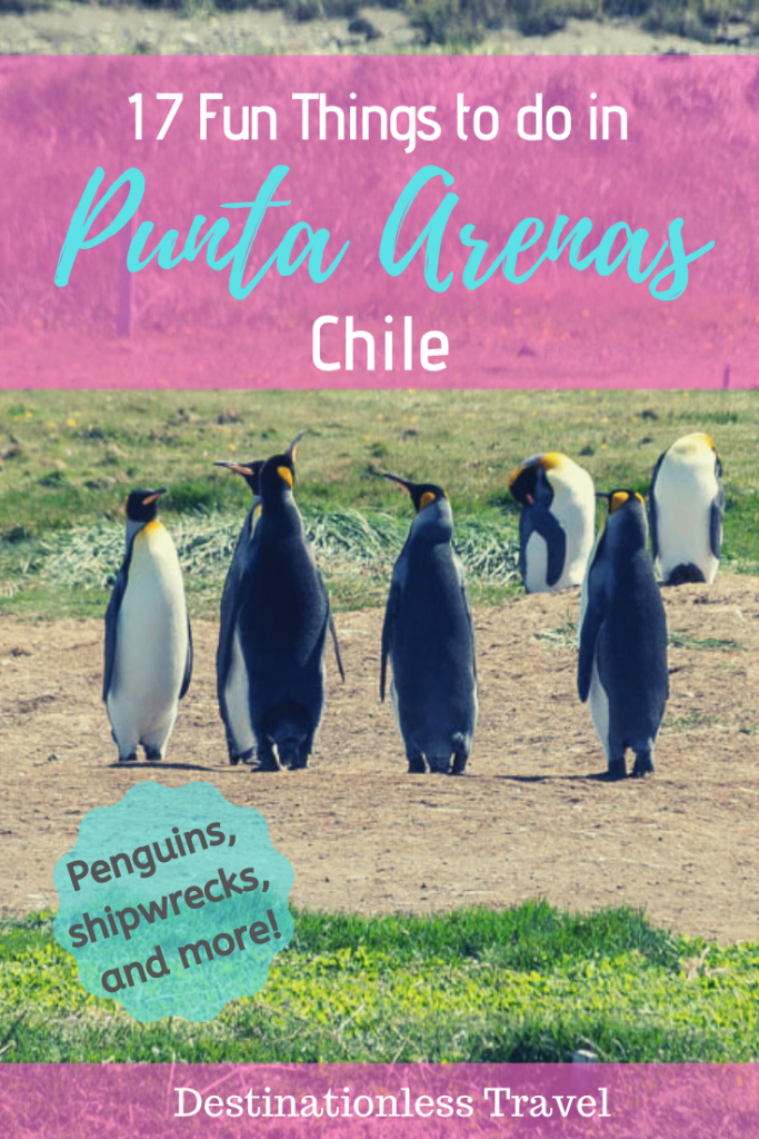 things to do in punta arenas chile pinterest image