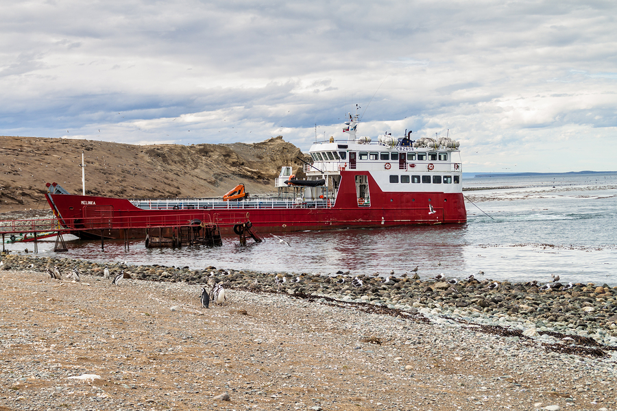 ferry to isla magdalena from punta arenas