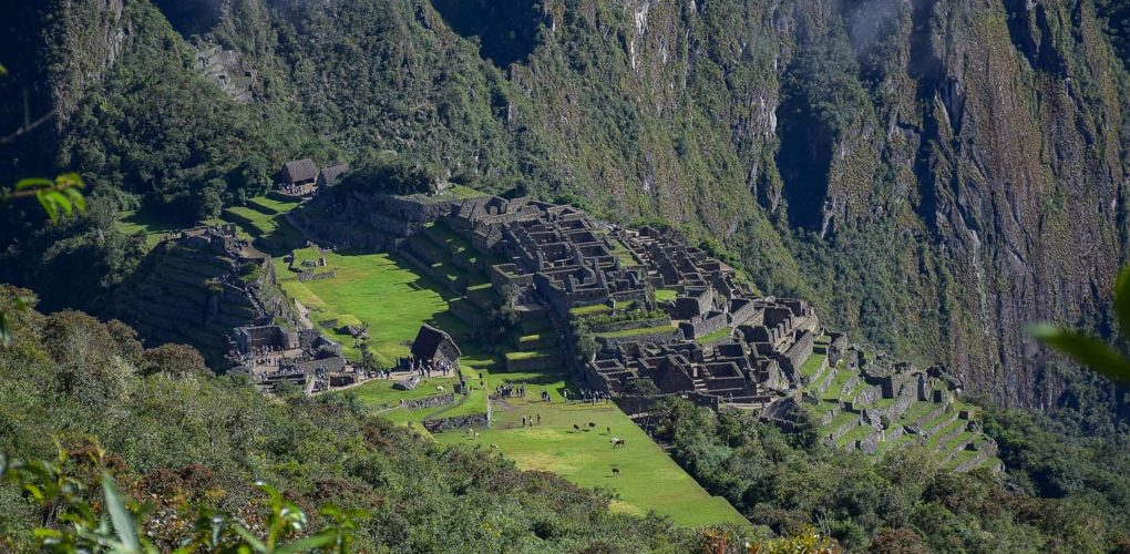 A zoomed in shot of Machu Picchu from Machu Picchu Mountain